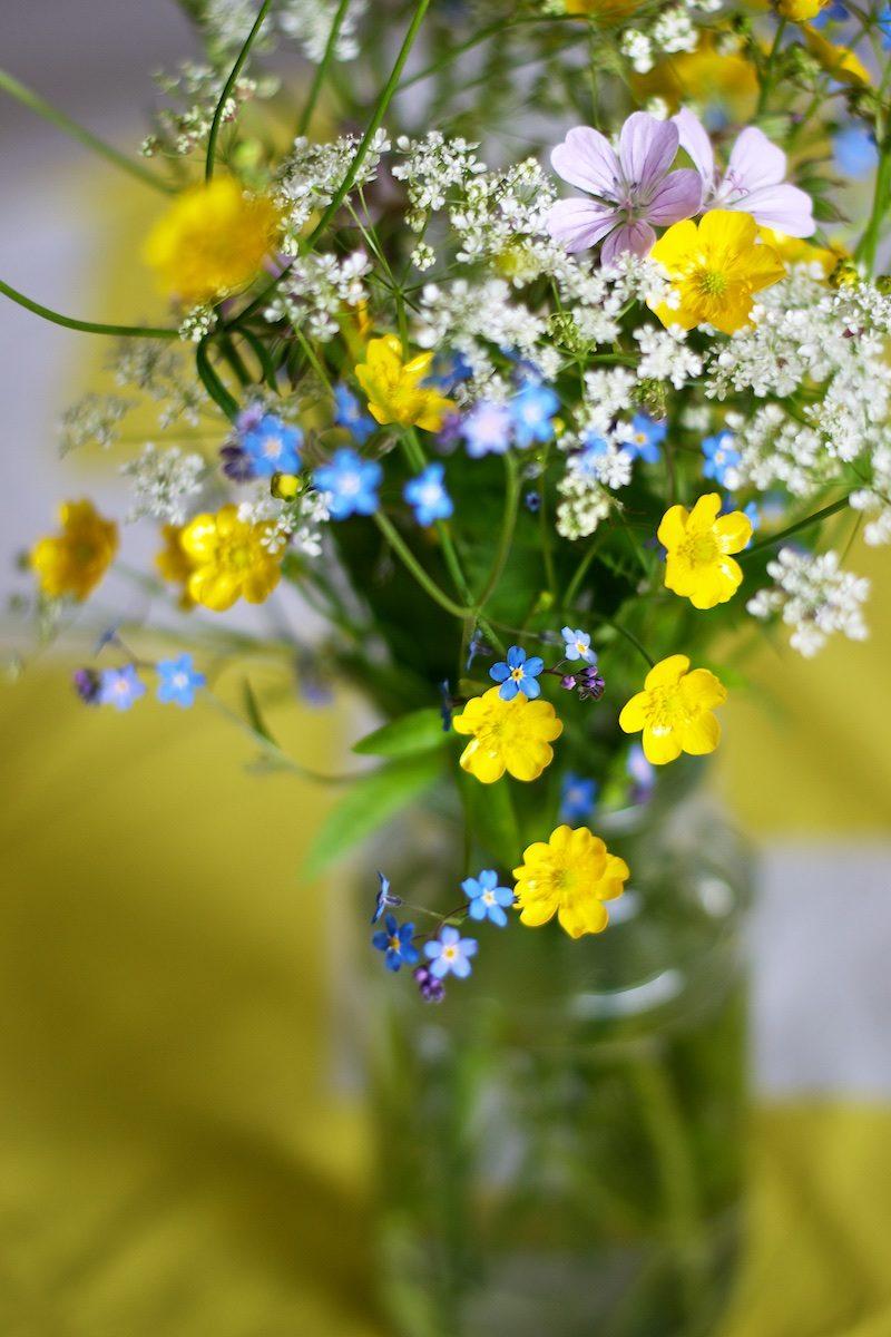 Kesäkukat_summerflowers_hannamarirahkonen1189