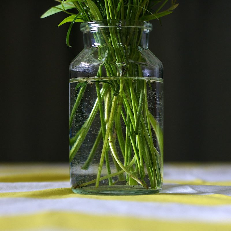 Kesäkukat_summerflowers_hannamarirahkonen1192