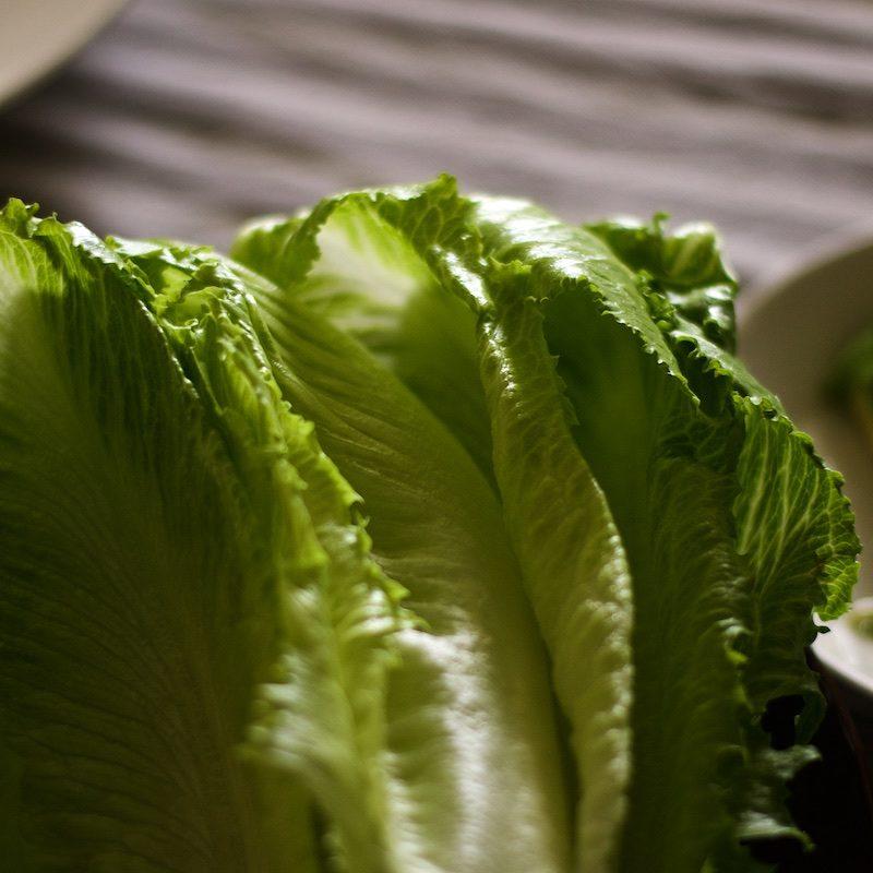 salaattitortillat_salaattiveneet_paleoresepti1509