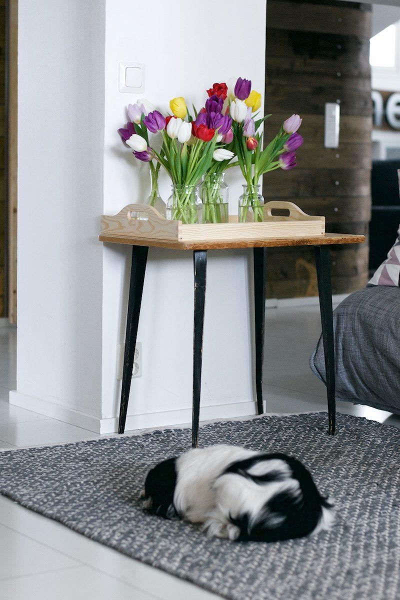 tulips_tulppaanit_hannamarirahkonen_yellowmood