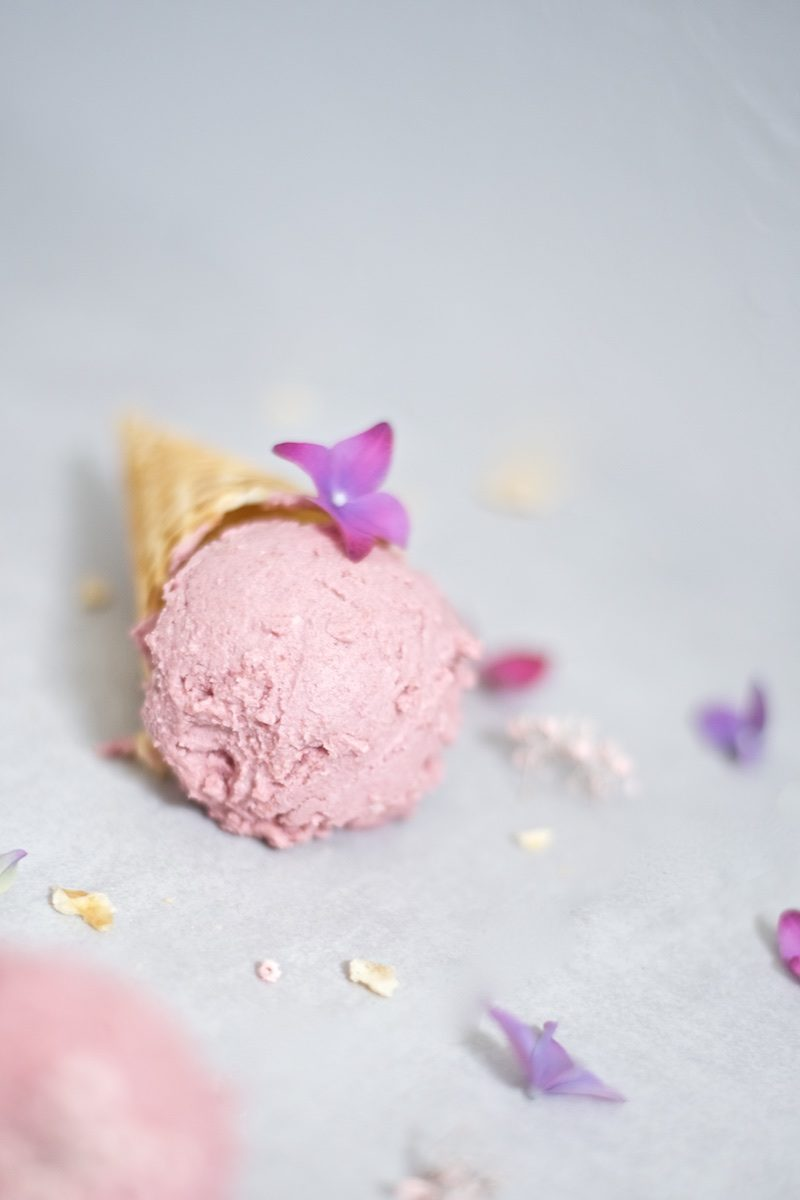 nicecream_vegan_dairyfree_icecream (5)