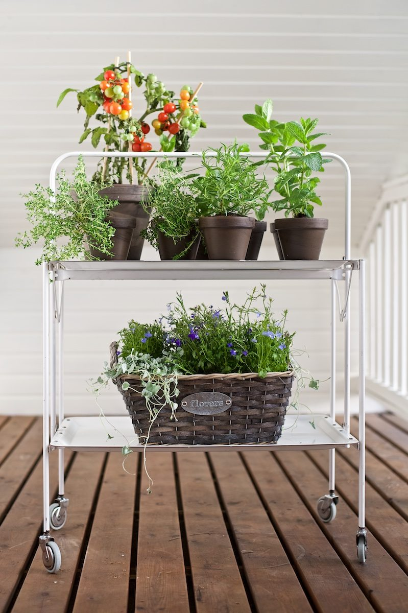 balcony_interior_planting_herbs_yellowmood13