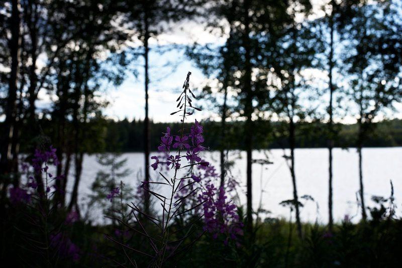 cottage-lapland-visitrovaniemi-visitlapland-ourfinland-hannamarirahkonen 6