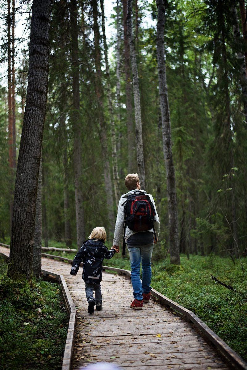 VIsitrovaniemi-yellowmood-vaattunkikongas-lapland-nature-visitlapland-hannamarirahkonen 5