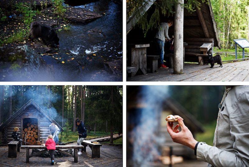 Visitrovaniemi-yellowmood-vaattunkikongas-lapland-nature-visitlapland-hannamarirahkonen 1 (1)
