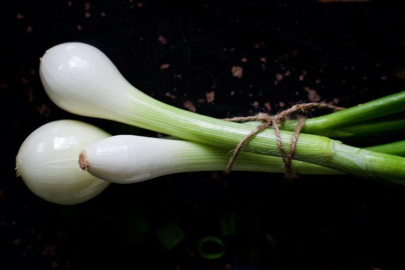 gogreen-linssikeitto-ruokakuvaus-hannamarirahkonen-glutenfree-yellowmoodkitchen 4
