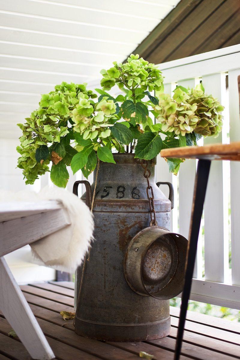 hydrangea-hortensia-gardening-yellowmood-hannamarirahkonen 4