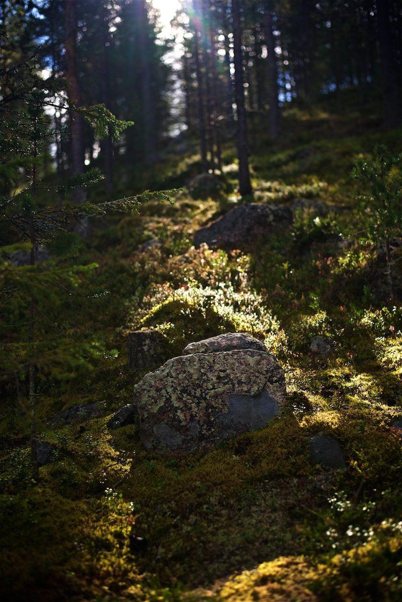 kemi-visitlapland-ourfinland-visitfinland-finnishlapland-lapland-view-1